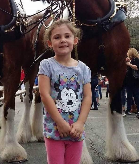 Папа решил сфотографировать дочку на фоне лошадей. А теперь взгляните на лошадь. Вы обязательно улыбнетесь