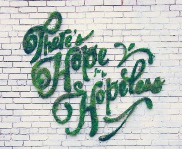Женщина изрисовала стену странной смесью. Через несколько дней эффект превысил ее ожидания
