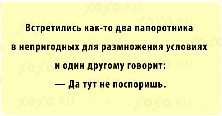 https://s.mediasole.ru/cache/content/data/images/813/813068/1507617744_13.png
