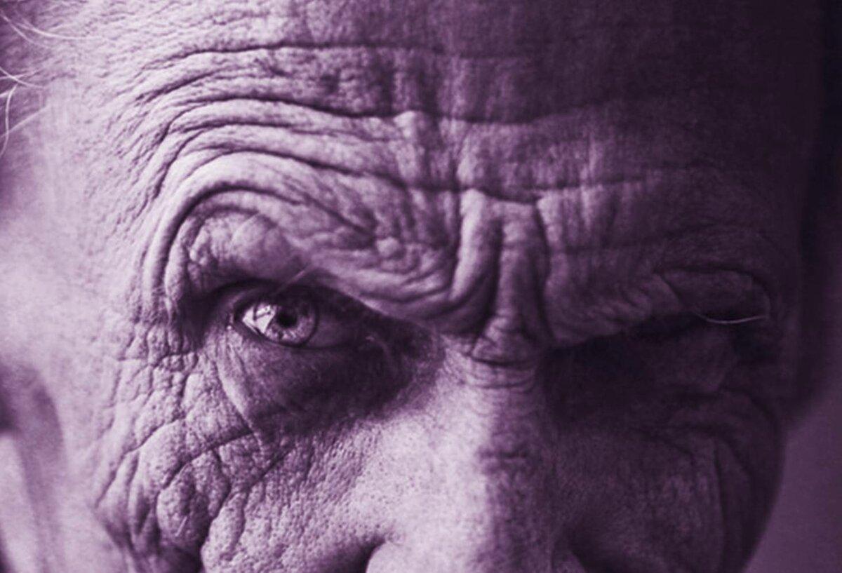 Как не старалась не смогла найти фото старика с ухоженными бровями. Муж Риты, по словам Таньки, (единственной из нас, кто видел его), был внешне очень похож на Иосифа Давыдовича Кобзона.