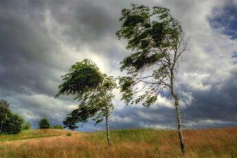 """""""Ветер, ветер на всем белом свете"""""""